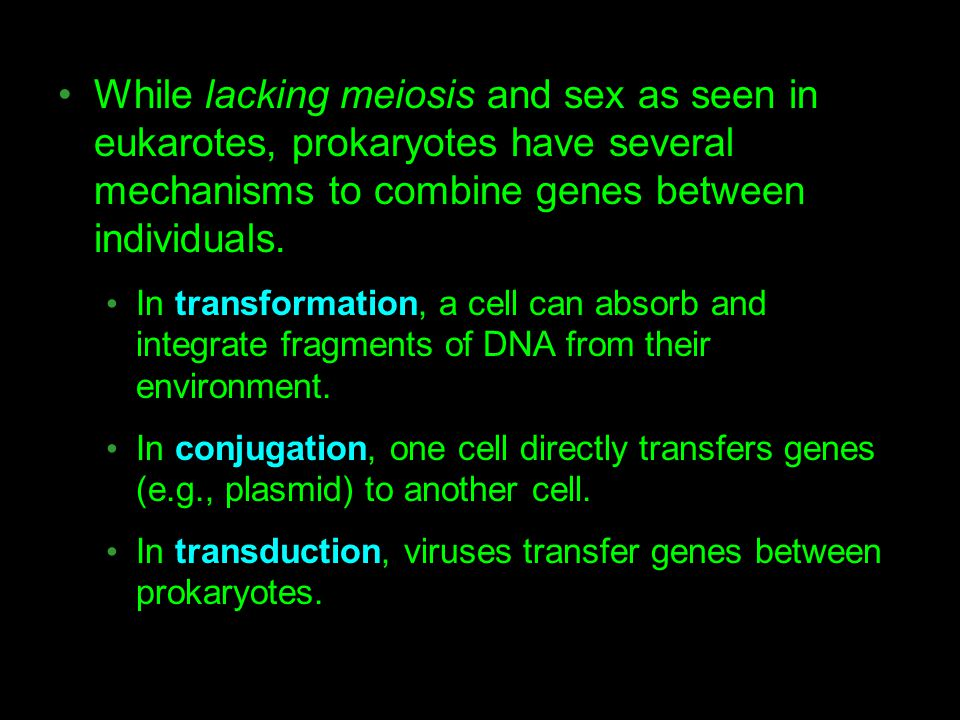 While lacking meiosis and sex as seen in eukarotes, prokaryotes have several mechanisms to combine genes between individuals. In transformation, a cel