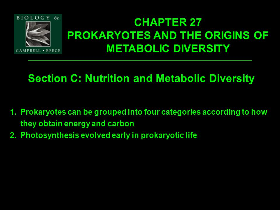 Section C: Nutrition and Metabolic Diversity 1.Prokaryotes can be grouped into four categories according to how they obtain energy and carbon 2.Photos