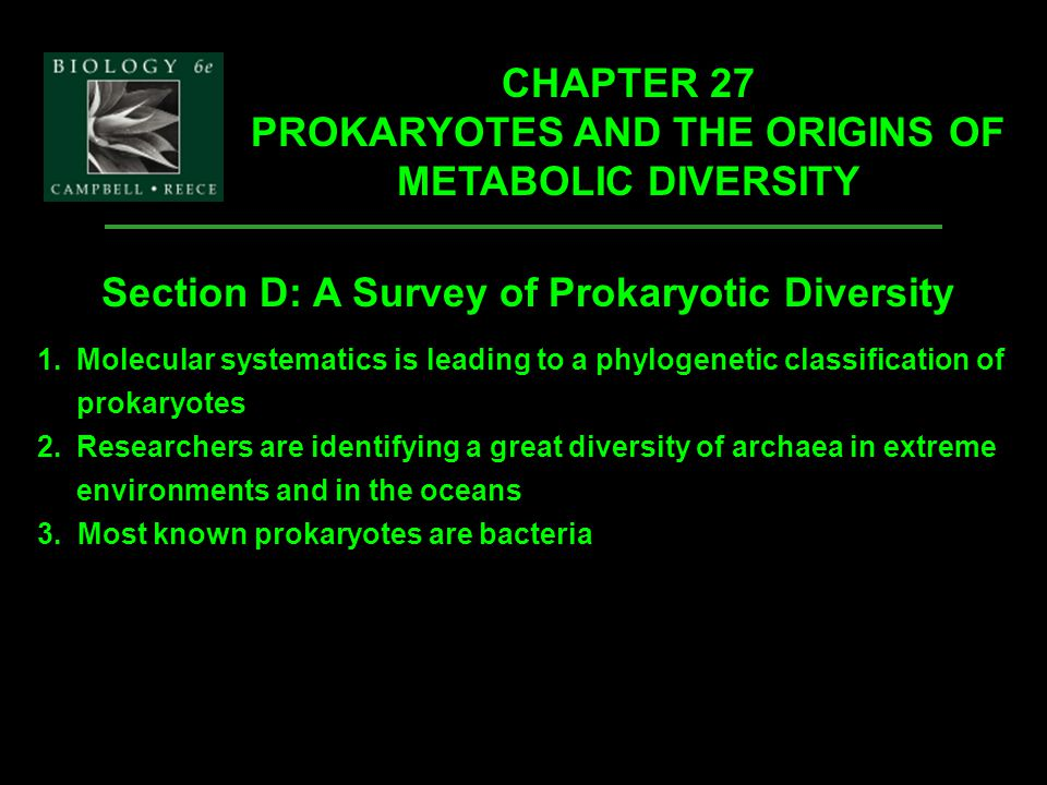 Copyright © 2002 Pearson Education, Inc., publishing as Benjamin Cummings Section D: A Survey of Prokaryotic Diversity 1.Molecular systematics is lead