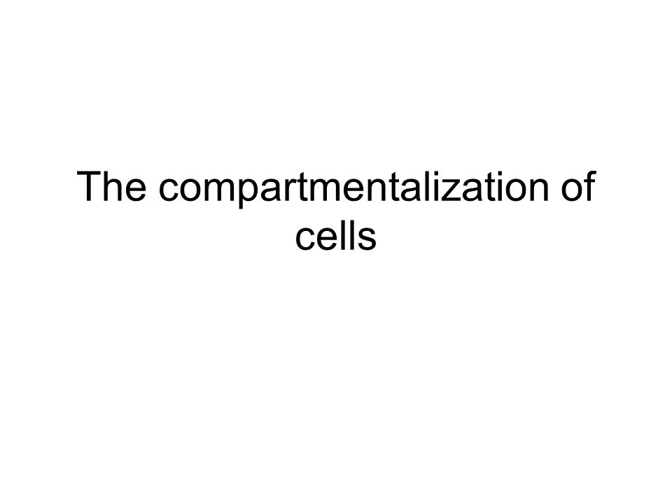 The compartmentalization of cells