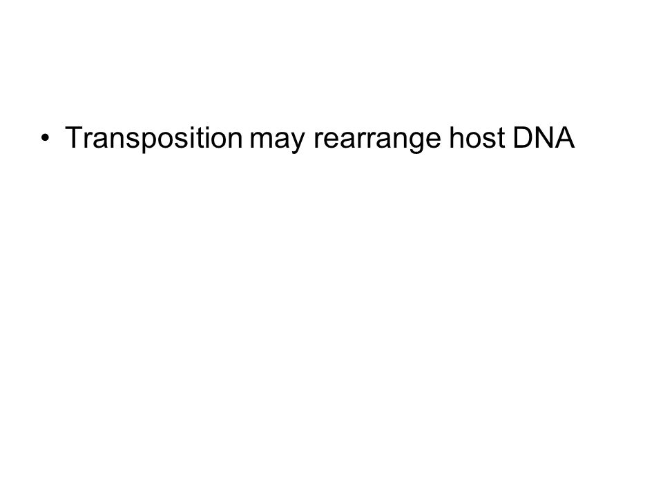 Transposition may rearrange host DNA