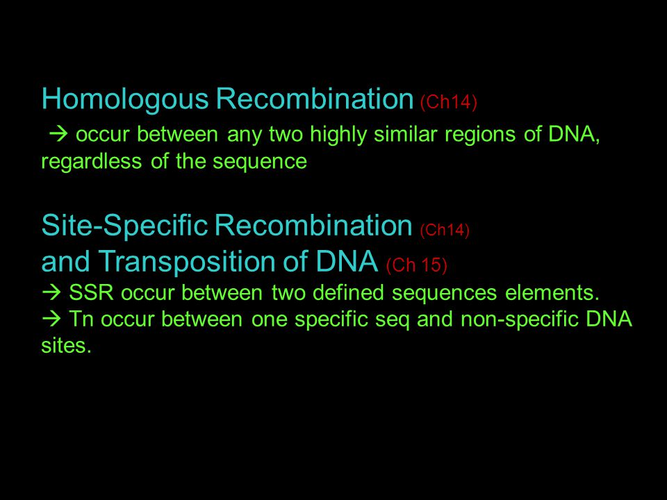 Homologous Recombination (Ch14)  occur between any two highly similar regions of DNA, regardless of the sequence Site-Specific Recombination (Ch14) and Transposition of DNA (Ch 15)  SSR occur between two defined sequences elements.