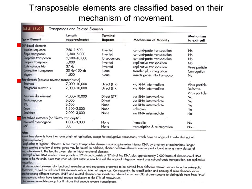 Transposable elements are classified based on their mechanism of movement.