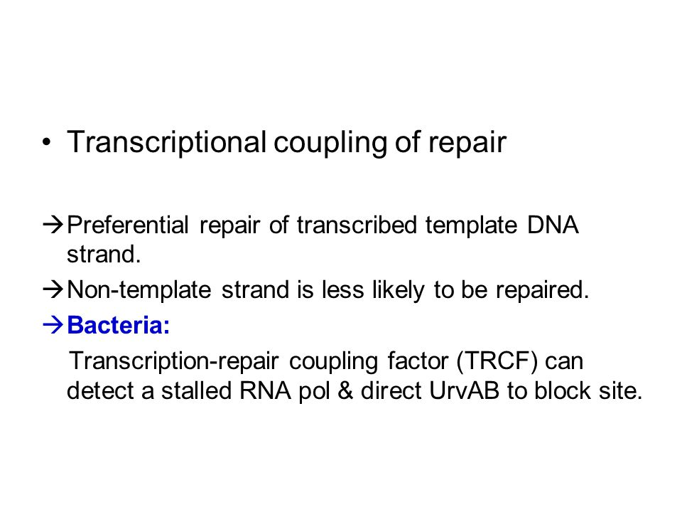 Transcriptional coupling of repair  Preferential repair of transcribed template DNA strand.  Non-template strand is less likely to be repaired.  Ba
