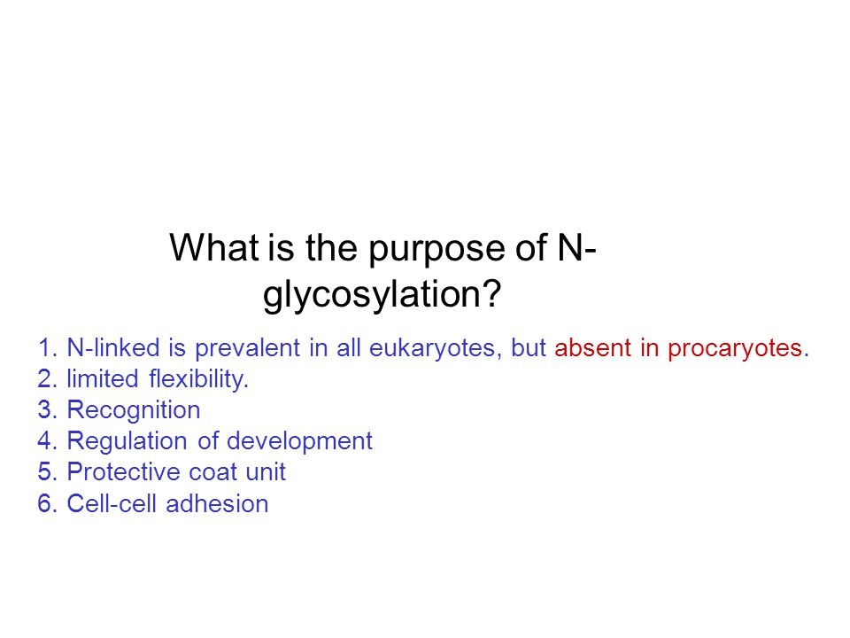 What is the purpose of N- glycosylation.1.