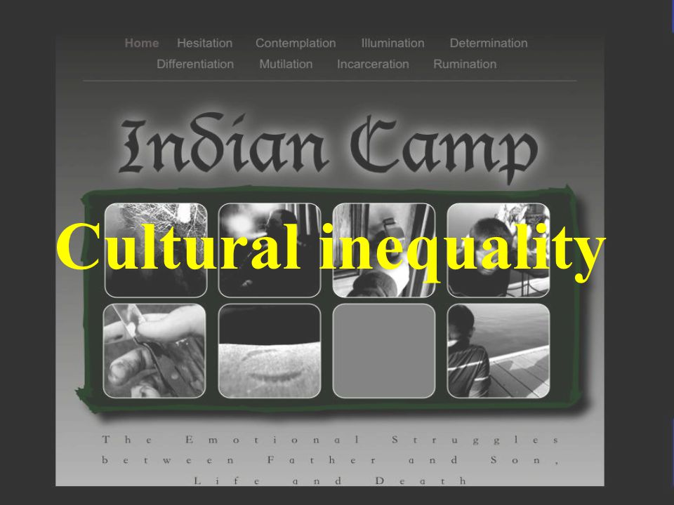 Cultural inequality