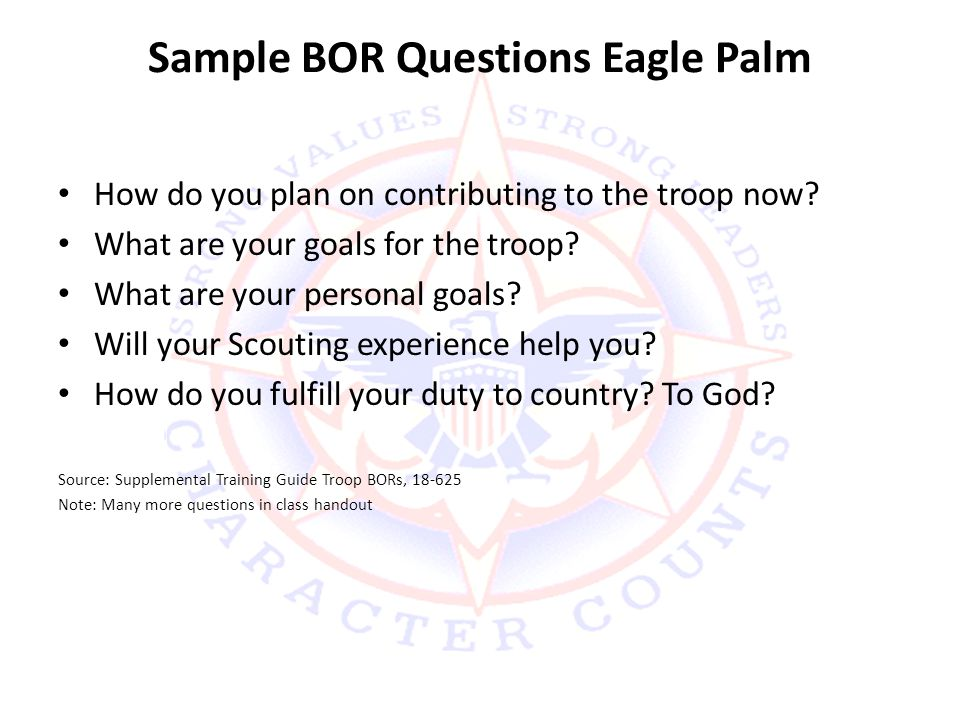 Sample BOR Questions Eagle Palm How do you plan on contributing to the troop now.