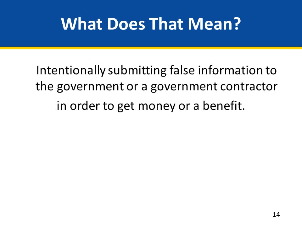 What Does That Mean? Intentionally submitting false information to the government or a government contractor in order to get money or a benefit. 14