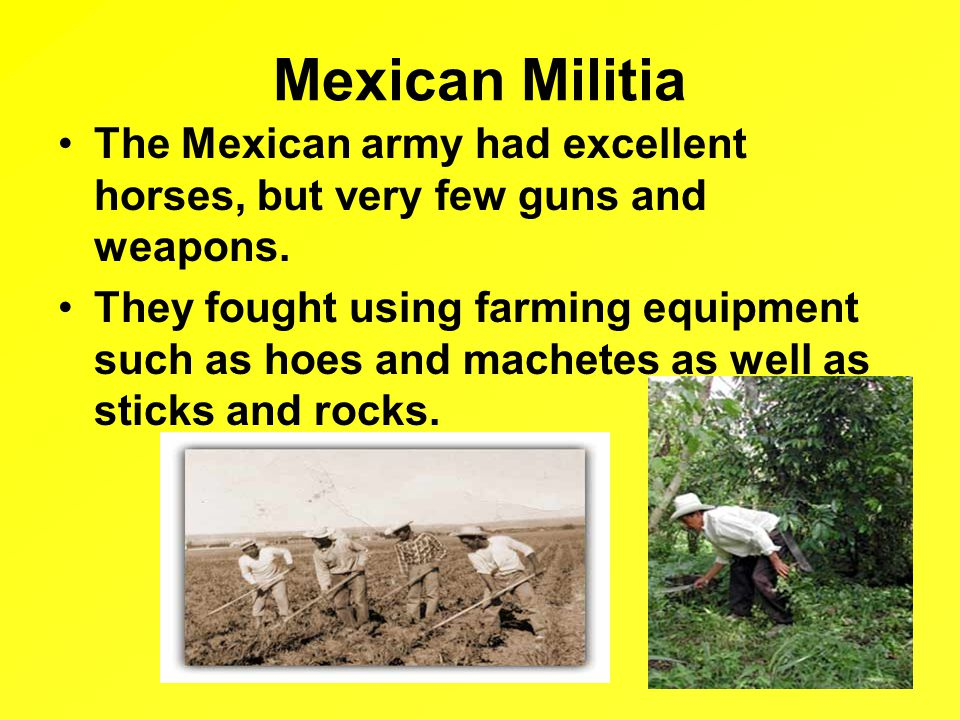 Mexican Militia The Mexican army had excellent horses, but very few guns and weapons.