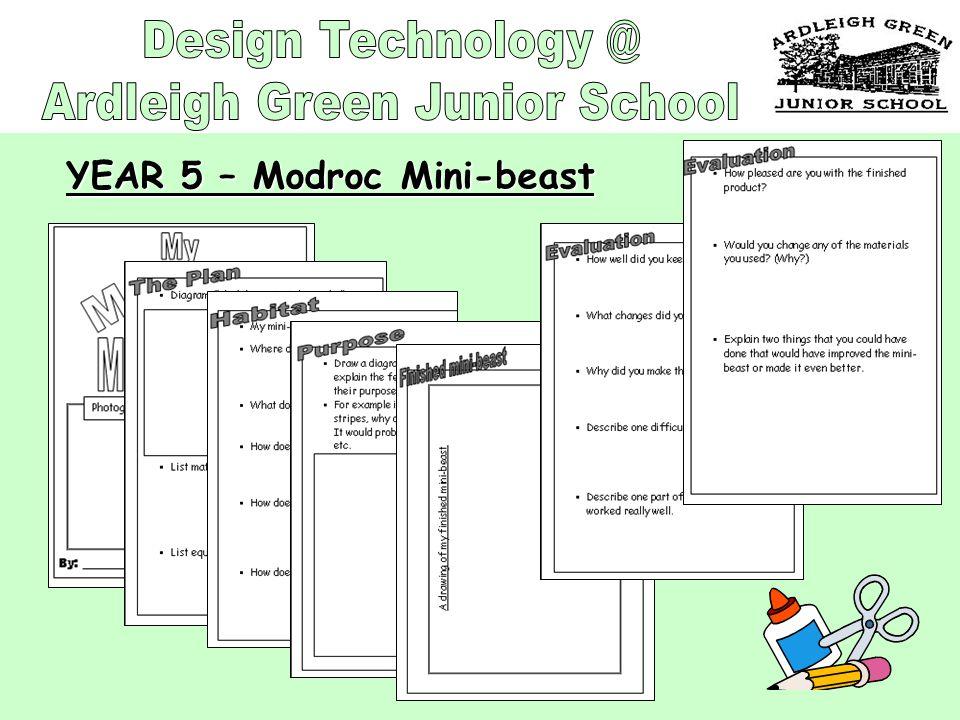 YEAR 5 – Modroc Mini-beast