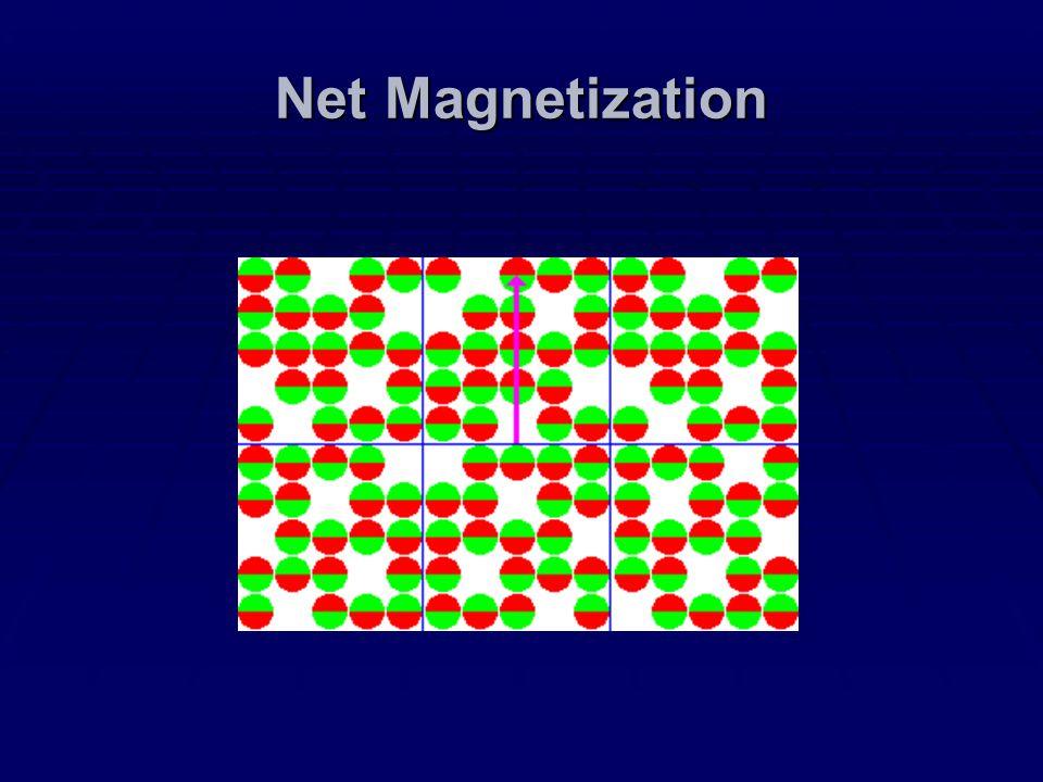 Net Magnetization