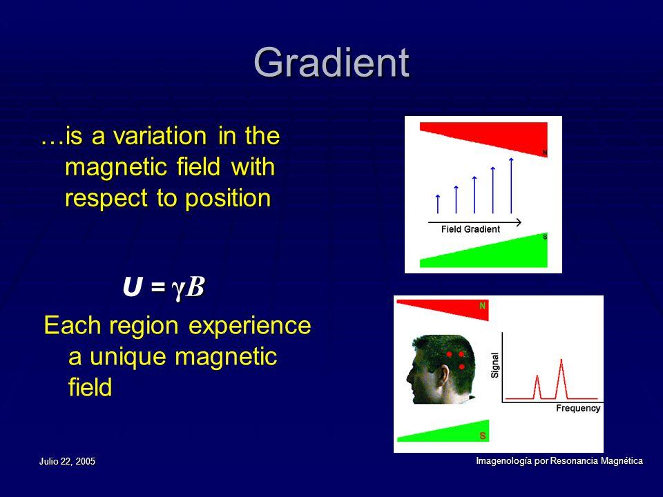 Julio 22, 2005 Imagenología por Resonancia Magnética Gradient is a variation in the magnetic field with respect to position …is a variation in the magnetic field with respect to position = γB υ = γB Each region experience a unique magnetic field