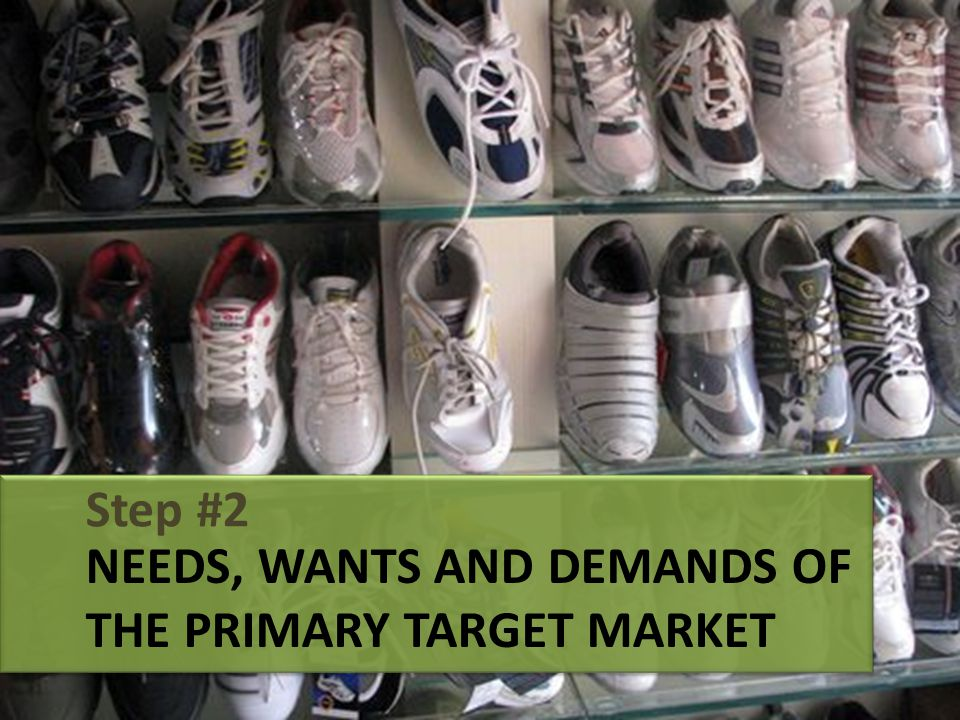 NEEDS, WANTS AND DEMANDS OF THE PRIMARY TARGET MARKET Step #2