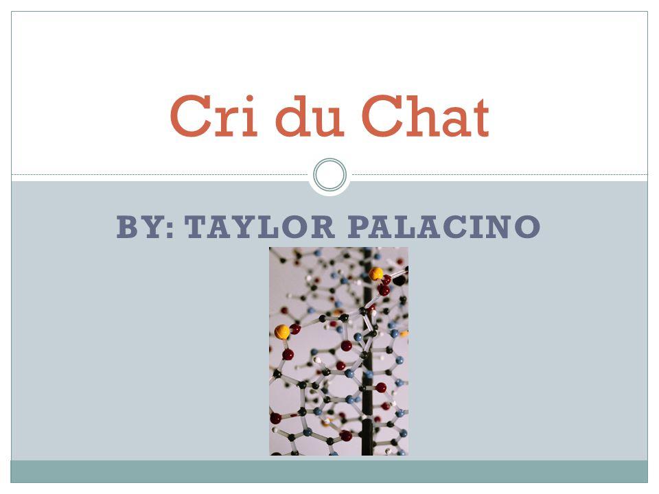 BY: TAYLOR PALACINO Cri du Chat