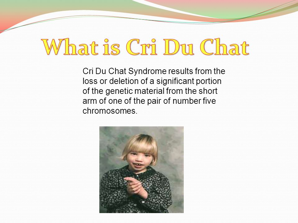 Cri Du Chat Syndrome results from the loss or deletion of a significant portion of the genetic material from the short arm of one of the pair of numbe