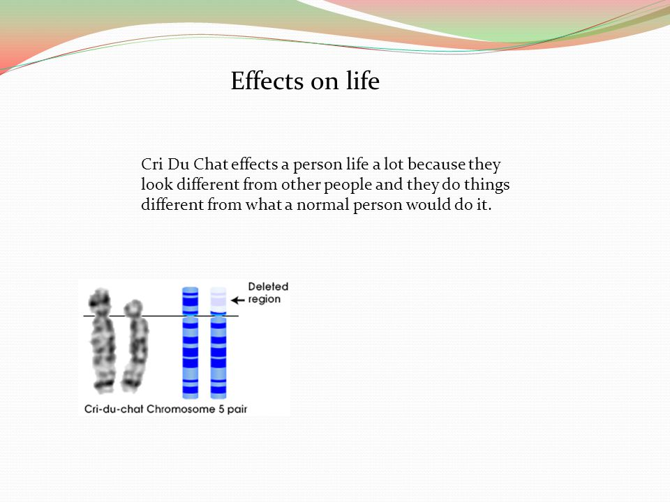 Effects on life Cri Du Chat effects a person life a lot because they look different from other people and they do things different from what a normal