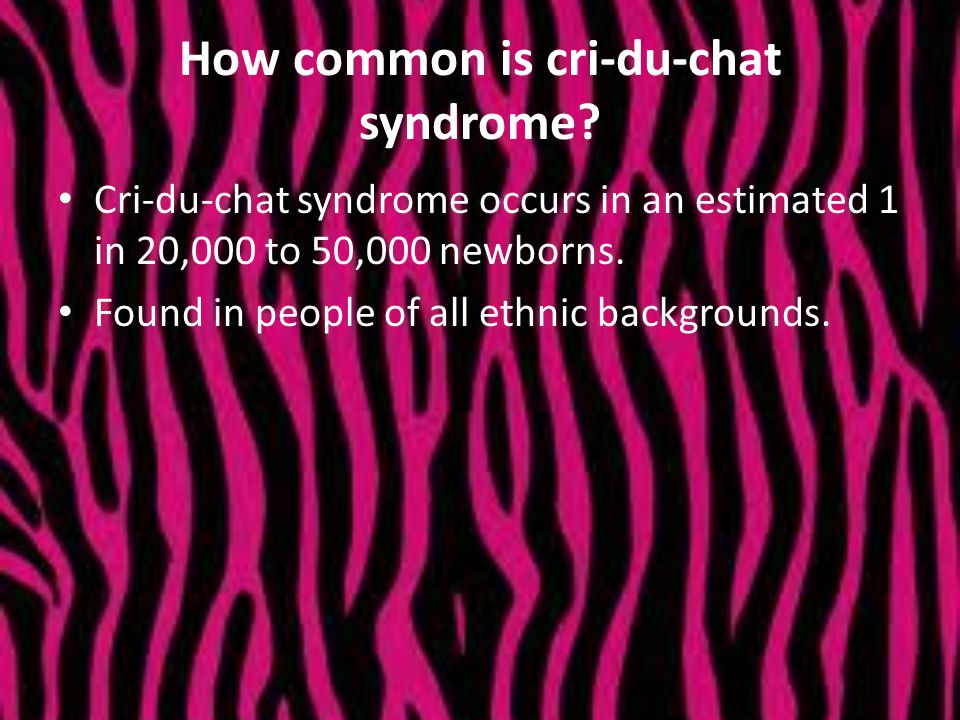 How common is cri-du-chat syndrome? Cri-du-chat syndrome occurs in an estimated 1 in 20,000 to 50,000 newborns. Found in people of all ethnic backgrou