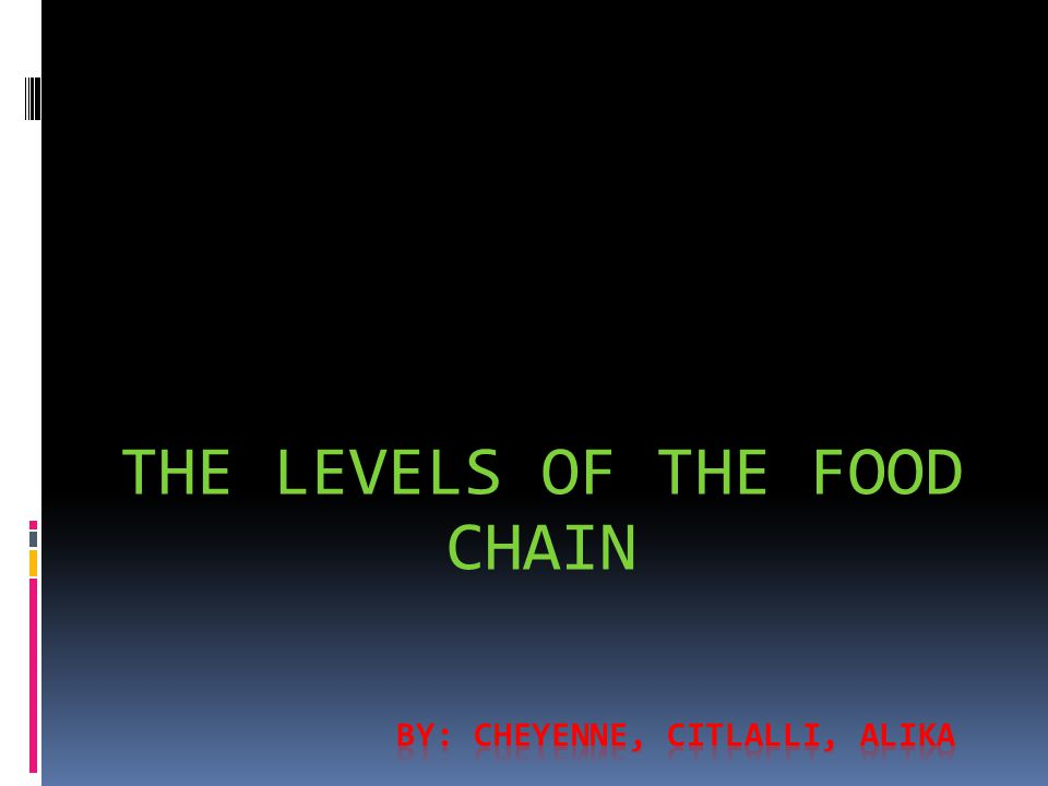 THE LEVELS OF THE FOOD CHAIN