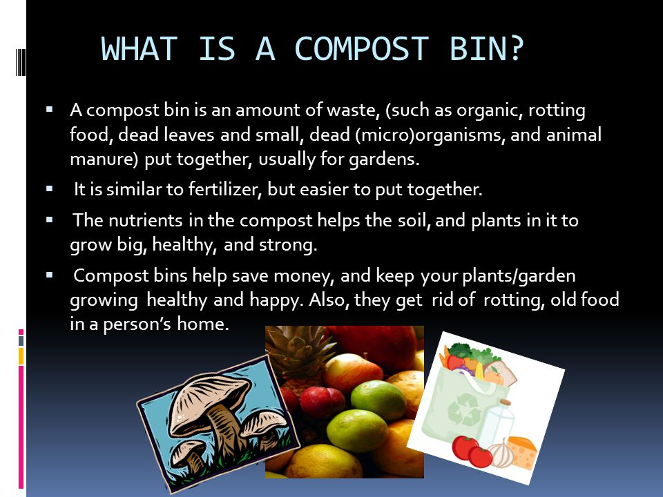 WHAT IS A COMPOST BIN.