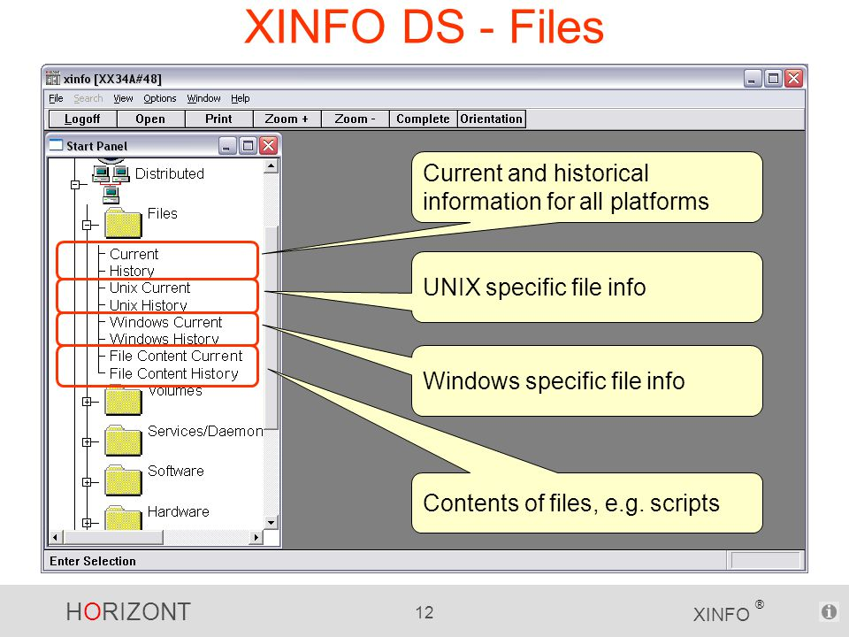 HORIZONT 12 XINFO ® XINFO DS - Files Current and historical information for all platforms UNIX specific file info Windows specific file info Contents of files, e.g.