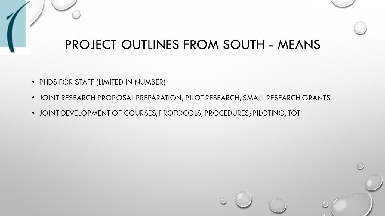 PROJECT OUTLINES FROM SOUTH - MEANS PHDS FOR STAFF (LIMITED IN NUMBER) JOINT RESEARCH PROPOSAL PREPARATION, PILOT RESEARCH, SMALL RESEARCH GRANTS JOIN