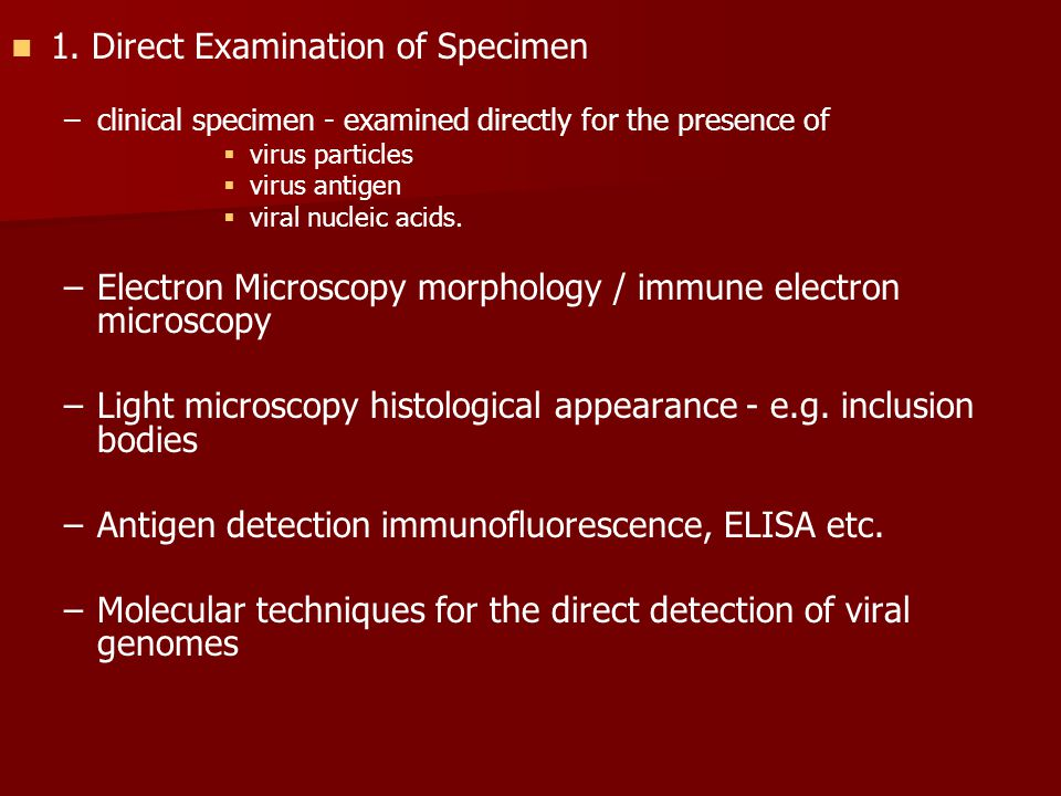 1. Direct Examination of Specimen – –clinical specimen - examined directly for the presence of   virus particles   virus antigen   viral nucleic