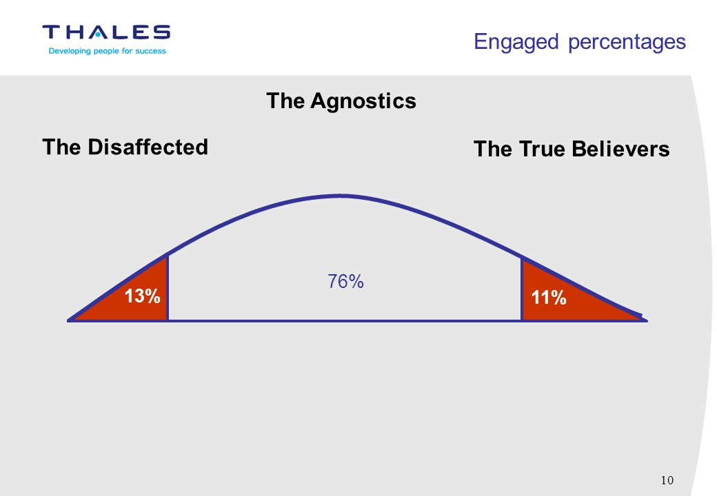 10 Engaged percentages 13% 11% 76% The Disaffected The Agnostics The True Believers