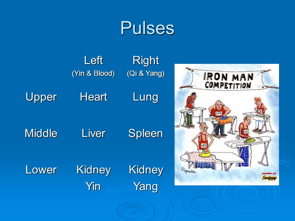 Pulses Left (Yin & Blood) Right (Qi & Yang) UpperHeartLung MiddleLiverSpleen LowerKidneyYinKidneyYang
