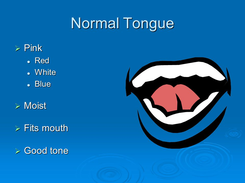 Normal Tongue  Pink Red Red White White Blue Blue  Moist  Fits mouth  Good tone