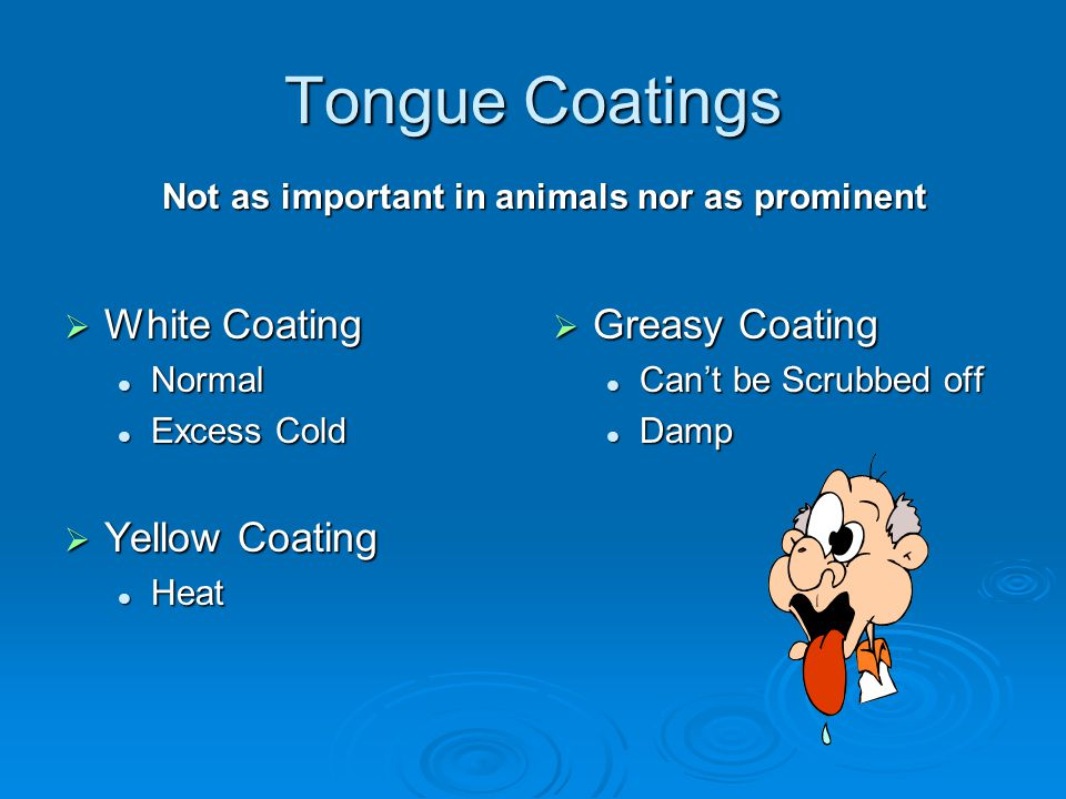 Tongue Coatings  White Coating Normal Normal Excess Cold Excess Cold  Yellow Coating Heat Heat  Greasy Coating Can't be Scrubbed off Damp Not as important in animals nor as prominent