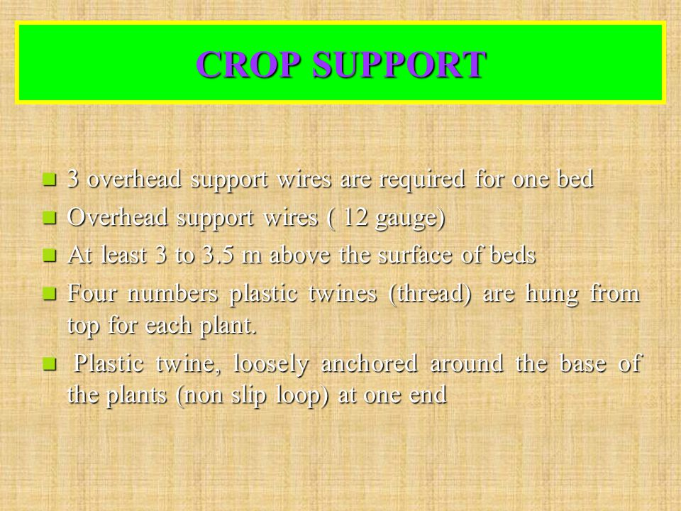 CROP SUPPORT 3 overhead support wires are required for one bed 3 overhead support wires are required for one bed Overhead support wires ( 12 gauge) Ov