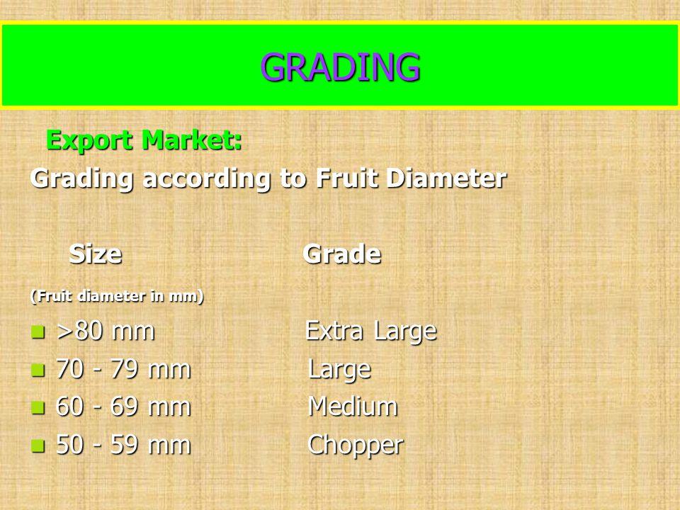 GRADING Export Market: Export Market: Grading according to Fruit Diameter Size Grade Size Grade (Fruit diameter in mm) >80 mm Extra Large >80 mm Extra