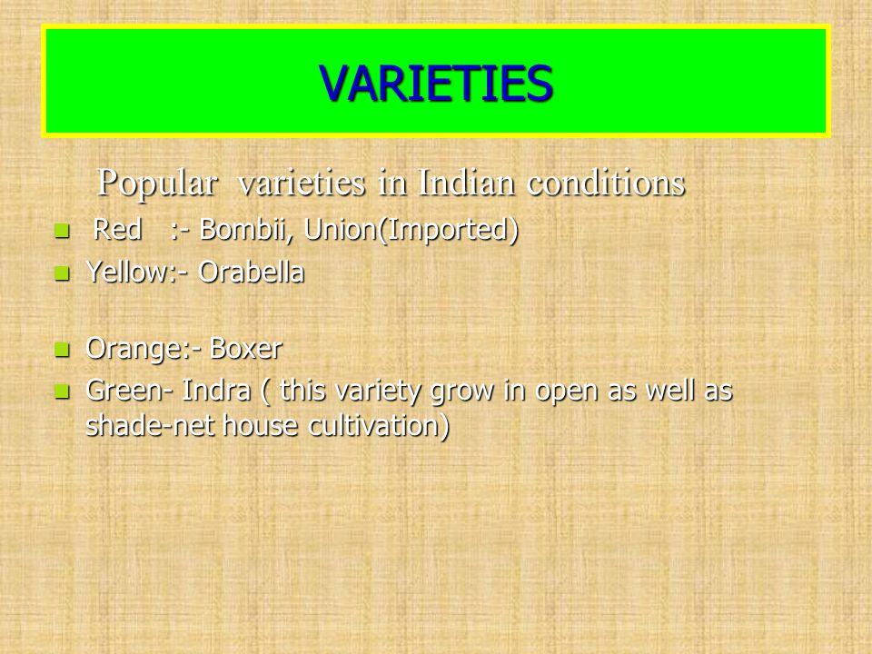 VARIETIES Popular varieties in Indian conditions Popular varieties in Indian conditions Red :- Bombii, Union(Imported) Red :- Bombii, Union(Imported)