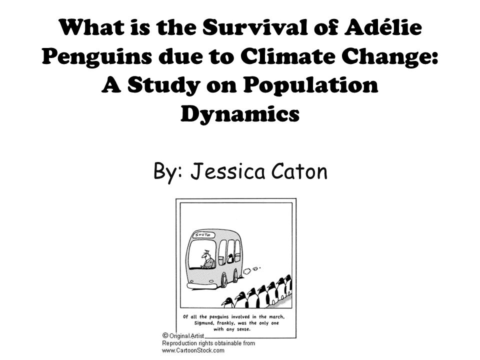 What is the Survival of Adélie Penguins due to Climate Change: A Study on Population Dynamics By: Jessica Caton