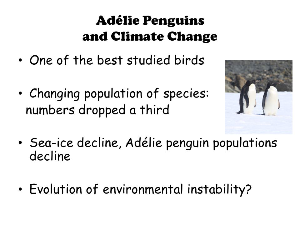 Survival and Mortality in a Population of Adélie Penguins (Ainley & DeMaster 1980)