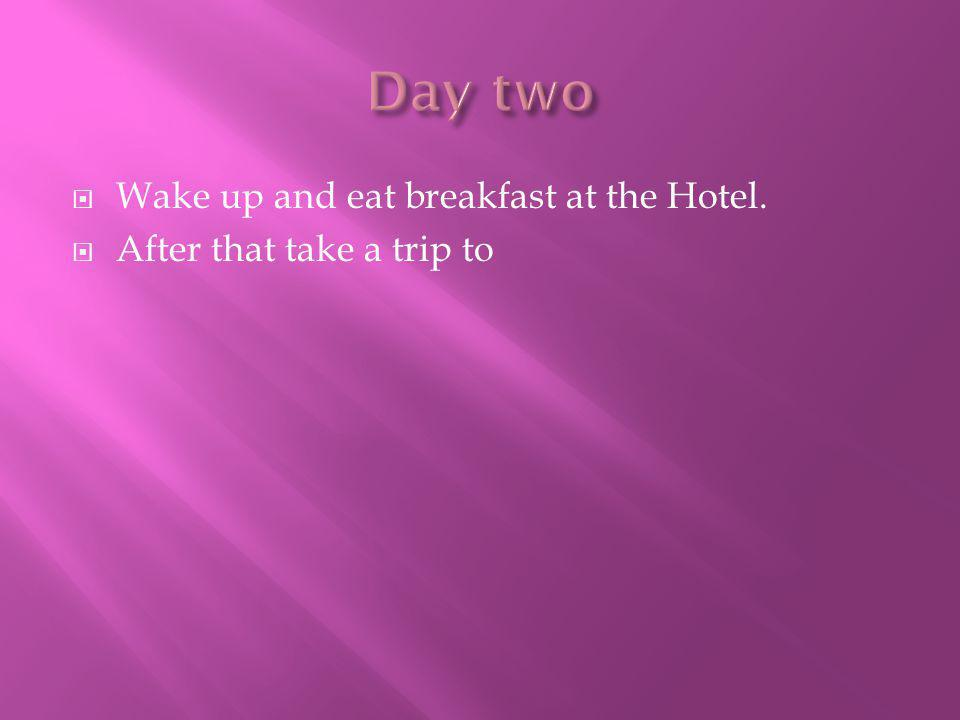  Wake up and eat breakfast at the Hotel.  After that take a trip to