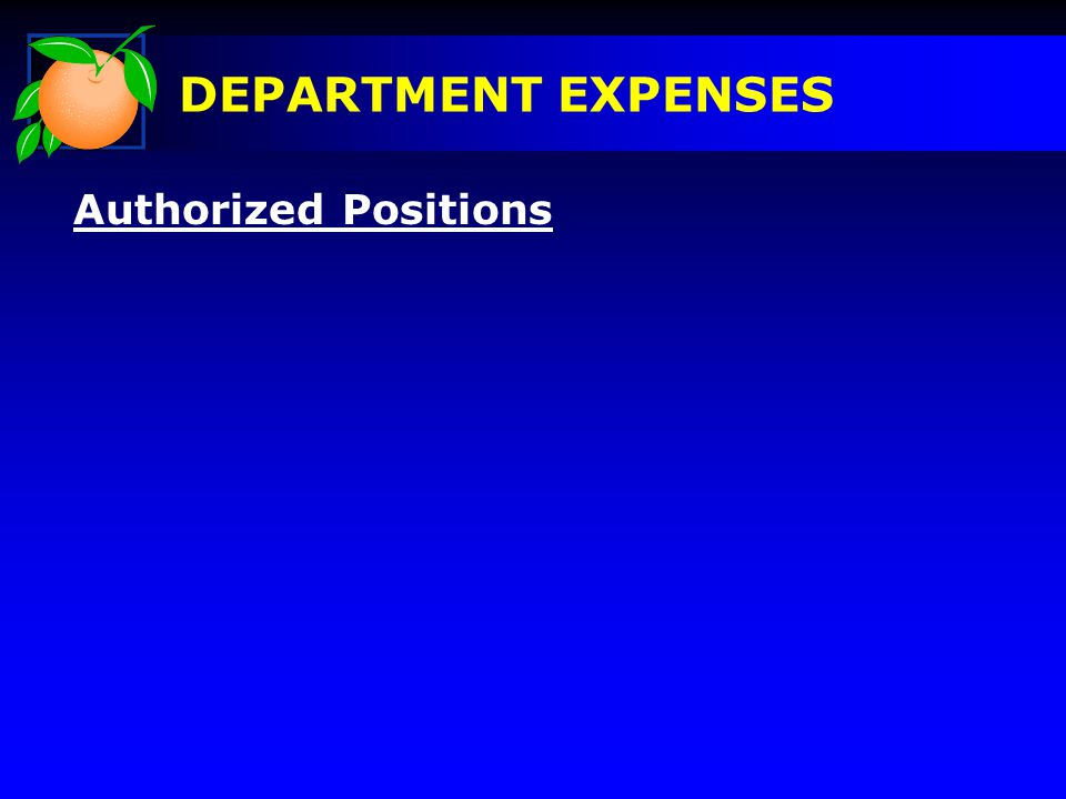Authorized Positions DEPARTMENT EXPENSES