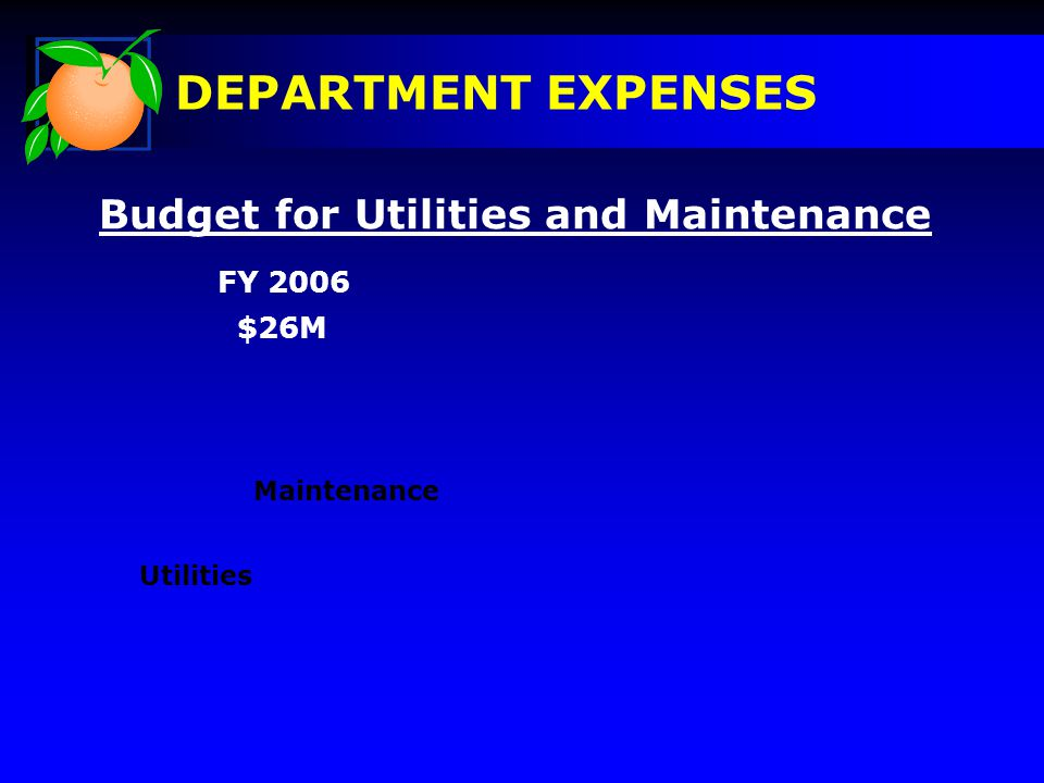 Budget for Utilities and Maintenance FY 2006 Utilities Maintenance $26M DEPARTMENT EXPENSES