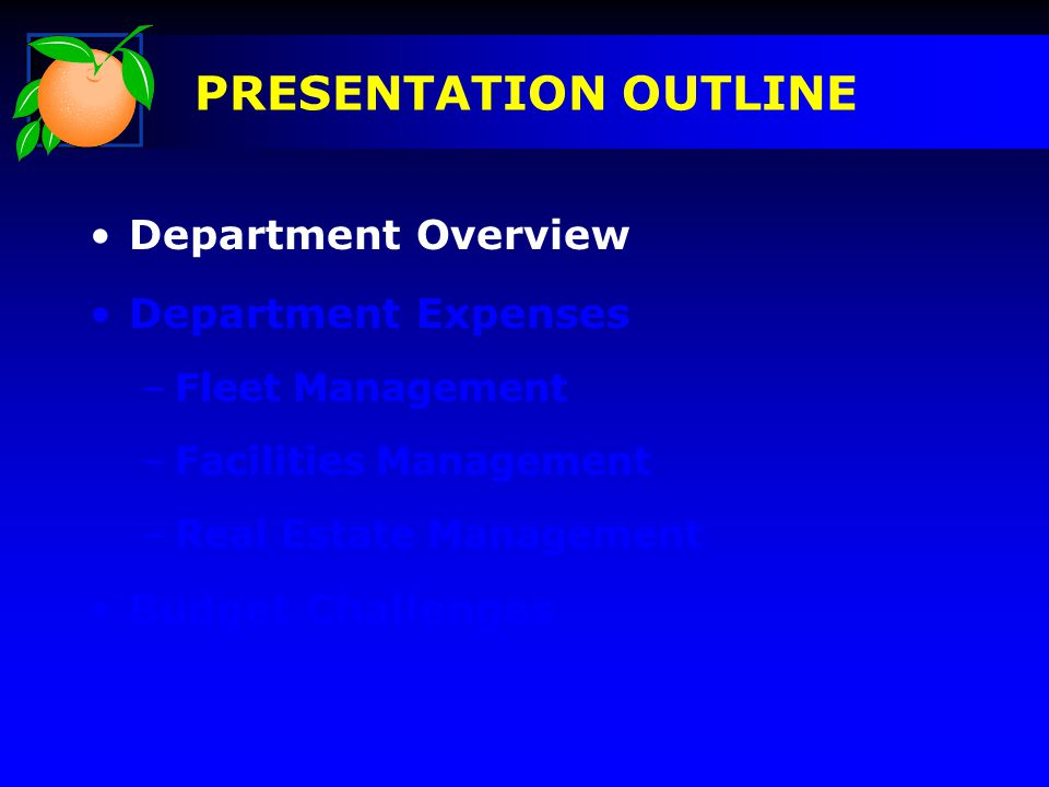 2010 Department Budget DEPARTMENT OVERVIEW