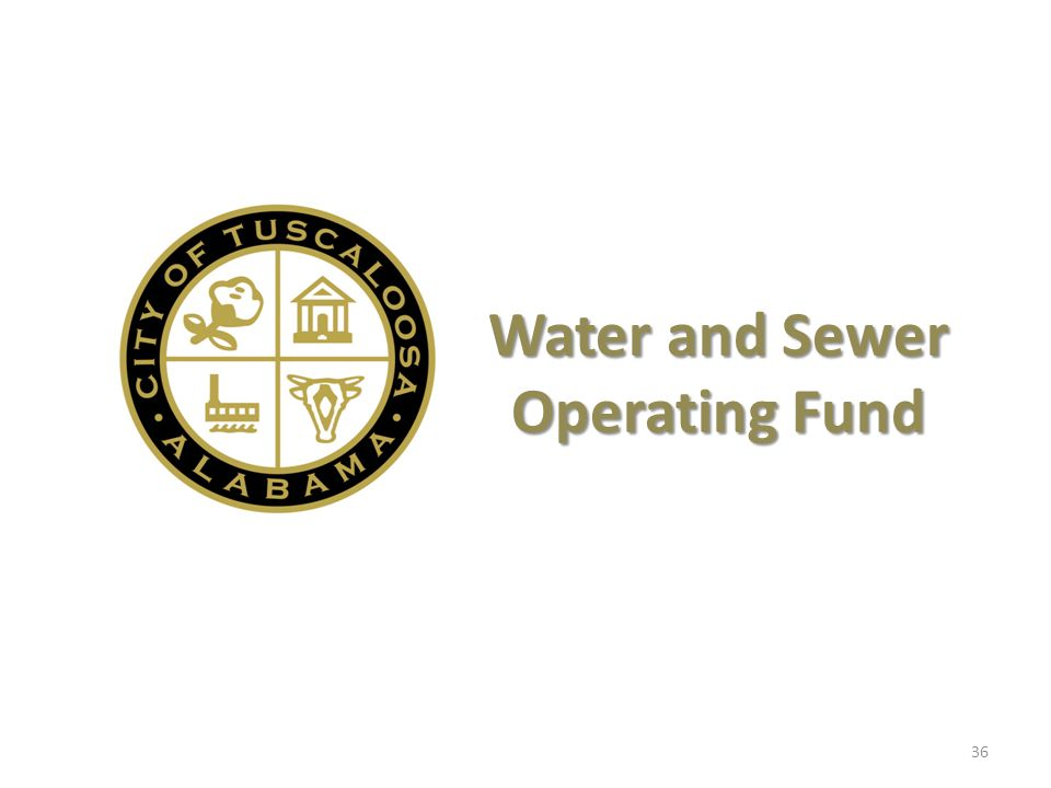 Water and Sewer Operating Fund 36