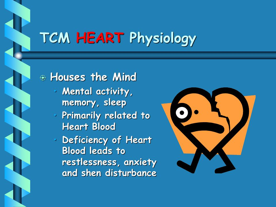 TCM HEART Physiology b Houses the Mind Mental activity, memory, sleepMental activity, memory, sleep Primarily related to Heart BloodPrimarily related