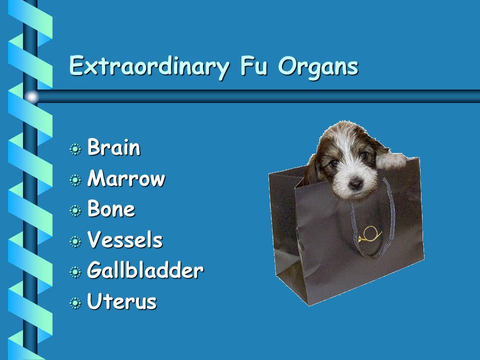 Extraordinary Fu Organs b Brain b Marrow b Bone b Vessels b Gallbladder b Uterus