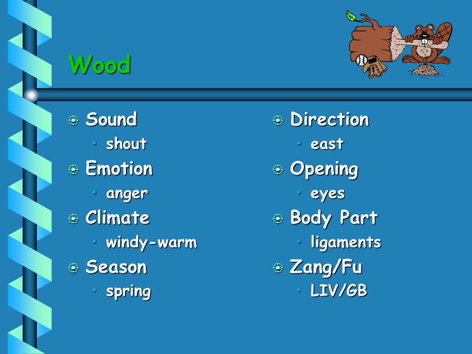 Wood b Sound shoutshout b Emotion angeranger b Climate windy-warmwindy-warm b Season springspring b Direction east b Opening eyes b Body Part ligament