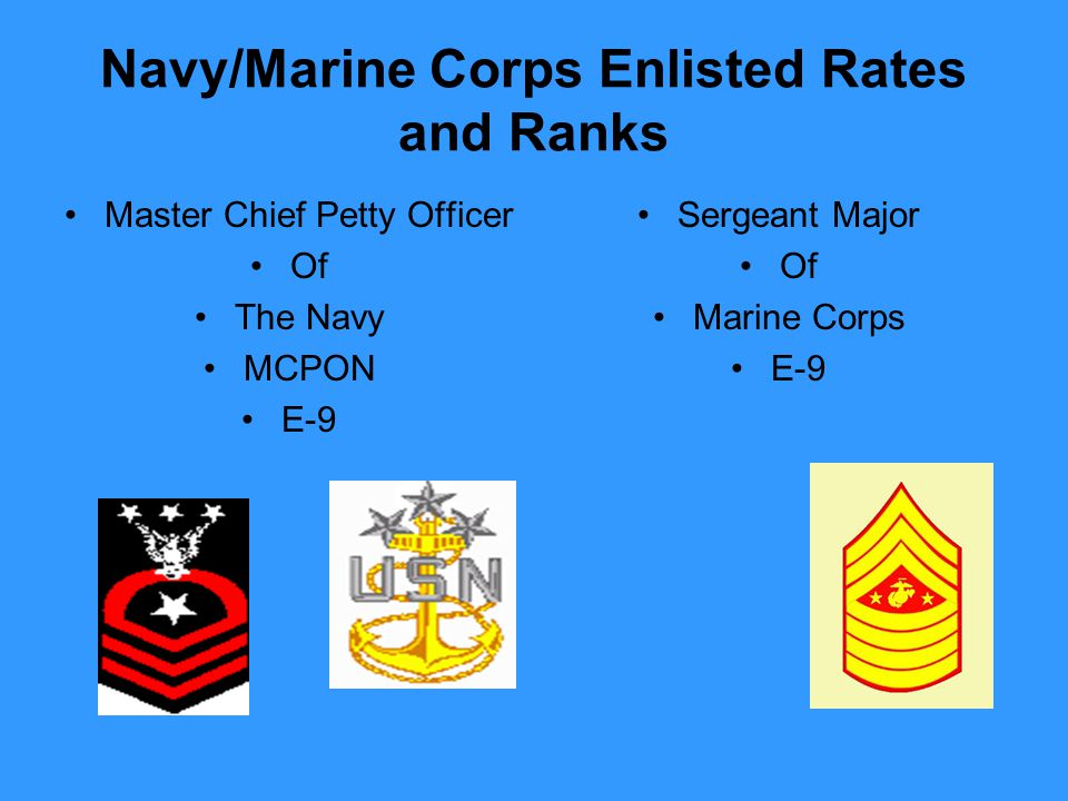 Navy/Marine Corps Enlisted Rates and Ranks Master Chief Petty Officer Of The Navy MCPON E-9 Sergeant Major Of Marine Corps E-9