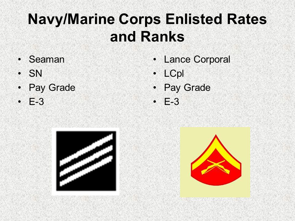 Navy/Marine Corps Enlisted Rates and Ranks Seaman SN Pay Grade E-3 Lance Corporal LCpl Pay Grade E-3