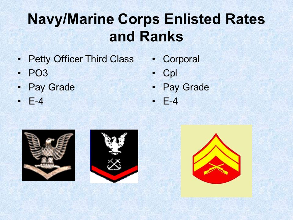 Navy/Marine Corps Enlisted Rates and Ranks Petty Officer Third Class PO3 Pay Grade E-4 Corporal Cpl Pay Grade E-4