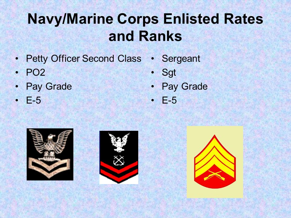 Navy/Marine Corps Enlisted Rates and Ranks Petty Officer Second Class PO2 Pay Grade E-5 Sergeant Sgt Pay Grade E-5
