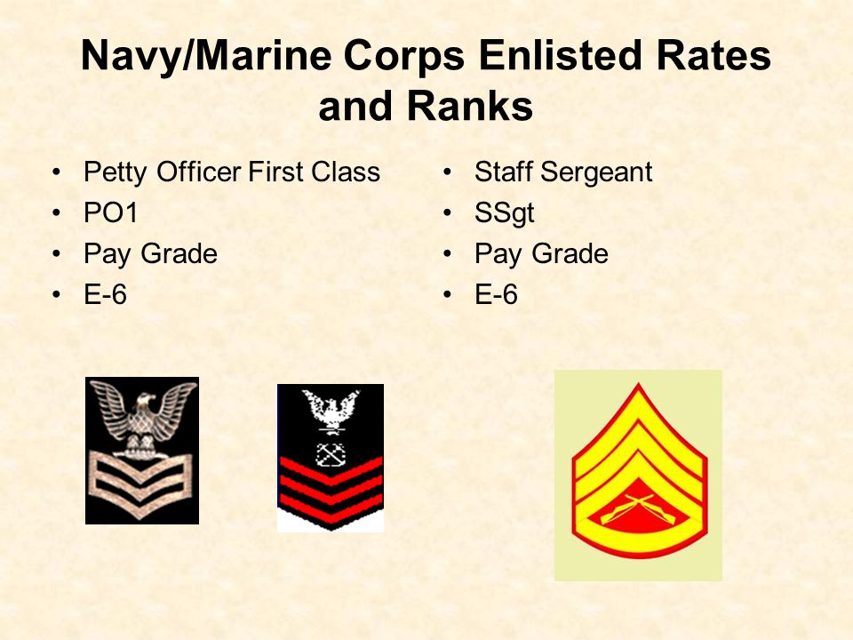 Navy/Marine Corps Enlisted Rates and Ranks Petty Officer First Class PO1 Pay Grade E-6 Staff Sergeant SSgt Pay Grade E-6