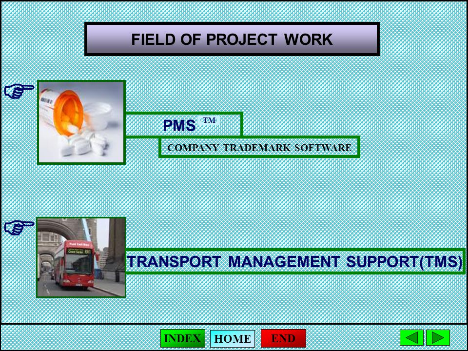 FIELD OF PROJECT WORK  PMS COMPANY TRADEMARK SOFTWARE  TRANSPORT MANAGEMENT SUPPORT(TMS) END HOME INDEX TM