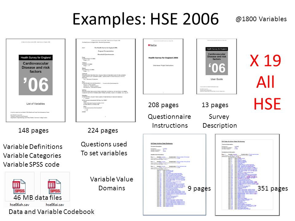 Examples: HSE 2006 13 pages208 pages Variable Definitions Variable Categories Variable SPSS code Questionnaire Instructions 224 pages Questions used To set variables 148 pages Survey Description 9 pages Variable Value Domains 351 pages 46 MB data files Data and Variable Codebook X 19 All HSE @1800 Variables